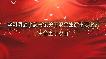 习近平总书记关于安全生产重要论述
